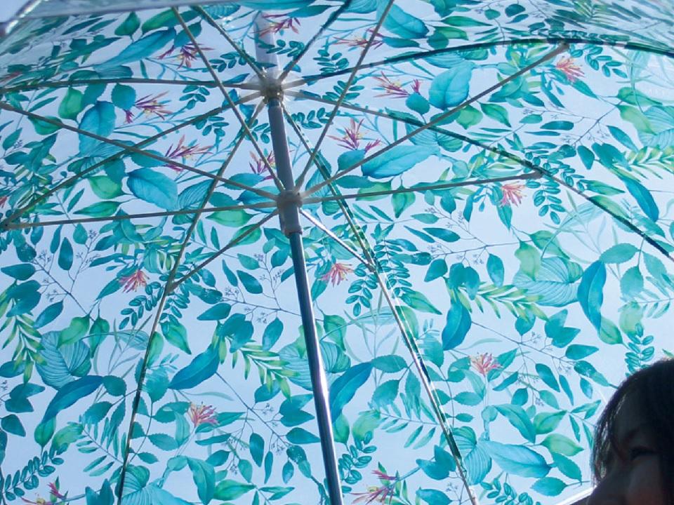 雨傘 涼しげ