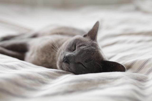 質の良い睡眠のためにやめたい5つのNG習慣