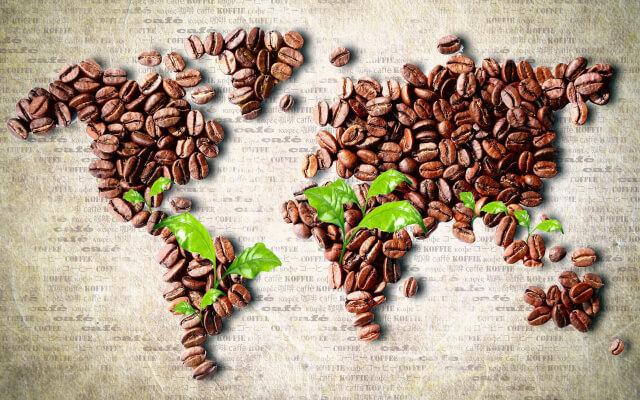 豆の世界地図